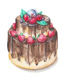 Watercolor chocolate cake with berries. Watercolor hand drawn sweet and tasty cake with strawberry and other berries on it Royalty Free Stock Images