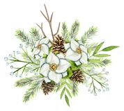 Watercolor Christmas bouquet with spruce, pinecones,white flower royalty free illustration