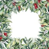 Watercolor Christmas floral frame. Greeting card with winter pla. Nts. Eucalyptus, snowberry, mistletoe, holly and berries. Holiday illustration for design royalty free illustration