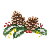 Watercolor Christmas illustration of fir tree Royalty Free Stock Images