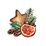 Watercolor Christmas ornament, decorated pine cone illustration, gingerbread cookie, dried orange fruit, cinnamon sticks, winter. Holiday clip art isolated on stock illustration