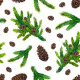 Watercolor Christmas pattern with fir branches and pinecones Stock Photos