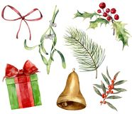 Watercolor Christmas plant and decor. Hand painted mistletoe, holly, gift with bow, red bow, gold bell, Christmas tree. Branches isolated on white background royalty free illustration
