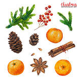Watercolor christmas set isolated on white background. Fir branches, pine, pine cones, red berries, orange tangerines, anise and cinnamon, hand painted Stock Photography