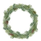 Watercolor Christmas tree wreath. Hand painted fir branch with pine cone isolated on white background. Holiday floral Royalty Free Stock Photography