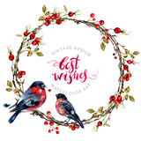 Watercolor Christmas Wreath with Bullfinches. Watercolor Wreath Made of Dry Twigs, Hawthorn Berries and a Couple of Bullfinches Sitting on It. Yule Chaplet. New Stock Photo
