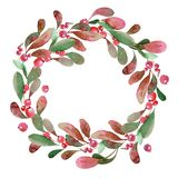 Watercolor Christmas wreath of green branch, leaves and berry. Watercolor illustration. Christmas wreath of green buxus branch, leaves and red berry vector illustration