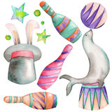 A watercolor circus set with the hand drawn elements: a fur seal with a ball, a hat with a rabbit and circus bowls.  Royalty Free Stock Images