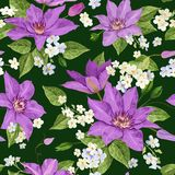 Watercolor Clematis Flowers. Floral Tropical Seamless Pattern for Wallpaper, Print, Fabric, Textile. Summer Background. With Blooming Purple Flowers. Vector Stock Photos