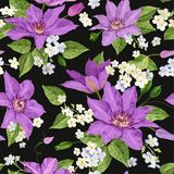 Watercolor Clematis Flowers. Floral Tropical Seamless Pattern for Wallpaper, Print, Fabric, Textile. Summer Background. With Blooming Purple Flowers. Vector Royalty Free Stock Photos
