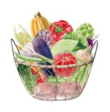 Watercolor clipart of vegetables in basket Royalty Free Illustration
