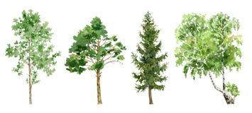 Watercolor cliparts των δέντρων Στοκ φωτογραφίες με δικαίωμα ελεύθερης χρήσης