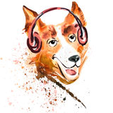 Watercolor close up portrait of a dog in headphones Royalty Free Stock Images