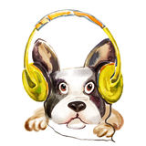 Watercolor close up portrait of a dog in headphones Stock Photo