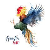 Watercolor cock rooster Royalty Free Stock Photography