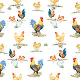 Watercolor cock rooster pattern Royalty Free Stock Image