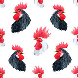 Watercolor cock rooster pattern Stock Images