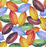 Watercolor cocoa fruit pattern. Watercolor cocoa fruit seamless pattern. Hand drawn exotic colorful cacao plants stock illustration