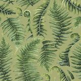 Watercolor fern leaves. Watercolor collection of fern branches. Hand painted seamless patterns Royalty Free Stock Photos