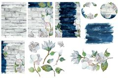 Watercolor collection of floral elements and texture for design Stock Images