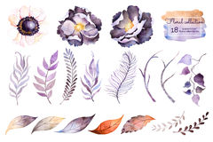 Watercolor collection with flower Stock Photo