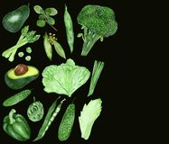 Watercolor collection of green vegetables and healthy seasonings isolated on black background.ound. Watercolor collection of green vegetables and healthy royalty free illustration