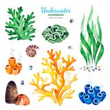 Watercolor collection with multicolored coral reefs,seashells and seaweeds. Underwater creatures. Watercolor collection with multicolored coral reefs,seashells stock illustration