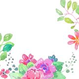 Watercolor color flowers background. Watercolor color flowers, bright and beautiful background over white Royalty Free Stock Photo