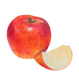Watercolor colored pencils apple. Hand drawn watercolor colored pencils apple. Isolated Stock Images