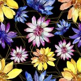 Watercolor colorful african daisy flower. Floral botanical flower.Seamless background pattern. Watercolor colorful african daisy flower. Floral botanical flower stock illustration