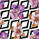 Watercolor colorful aquilegia flower. Floral botanical flower. Seamless background pattern. royalty free illustration
