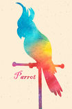 Watercolor colorful  bird. Watercolor painting Royalty Free Stock Images
