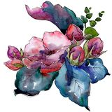 Watercolor colorful bouquet flower. Floral botanical flower. Isolated illustration element. royalty free illustration
