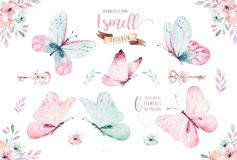 Watercolor Colorful Butterflies, Isolated On White Background. Blue, Yellow, Pink And Red Butterfly Illustration. Royalty Free Stock Photos