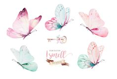 Watercolor Colorful Butterflies, Isolated On White Background. Blue, Yellow, Pink And Red Butterfly Illustration. Royalty Free Stock Image
