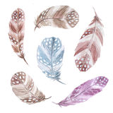 Watercolor colorful feathers set. Set of isolated watercolor feathers in brown and blue pastel colors. Hand painted  colorful feathers in tribal boho aztec style Stock Photos