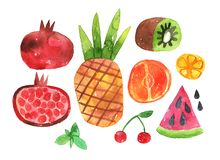 Watercolor colorful set of tropical fruits royalty free illustration