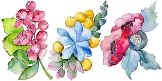 Watercolor colorful tropical bouquet flower. Floral botanical flower. Isolated illustration element. Aquarelle wildflower for background, texture, wrapper stock illustration