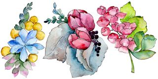 Watercolor colorful tropical bouquet flower. Floral botanical flower. Isolated illustration element. Aquarelle wildflower for background, texture, wrapper vector illustration