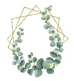 Watercolor vector composition from the branches of eucalyptus and gold geometric frame. stock illustration