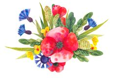 Watercolor composition with different bright wild flowers vector illustration