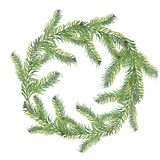 Watercolor composition of fir branches. royalty free illustration