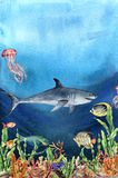 Watercolor coral reef border and shark. Hand painted underwater illustration with laminaria branch, fish, tridact. Mollusk and shell isolated on ocean Royalty Free Stock Image