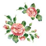 Watercolor corner floral frame of roses. Corner floral composition of roses. Watercolor illustration Royalty Free Stock Images