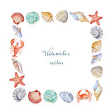 Watercolor corners of the frame with sea shells Stock Images