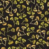 Watercolor corolla dill flower seamless pattern Stock Photo