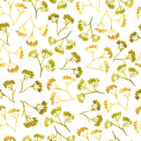 Watercolor corolla dill flower seamless pattern Stock Photos