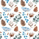 Watercolor cotton flowers, pine cones and blue branches winter Christmas seamless pattern. Hand painted on a white background, celebratory winter design Royalty Free Stock Photography