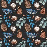 Watercolor cotton flowers, pine cones and blue branches winter Christmas seamless pattern. Hand painted on a blue background, celebratory winter design Stock Image