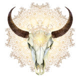 Watercolor cow skull stock illustration